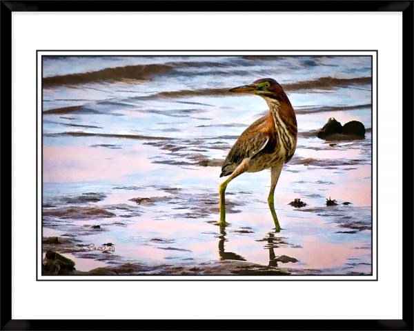 2x3-picture-frame-black-with-Gregg-Heron-On-Alert