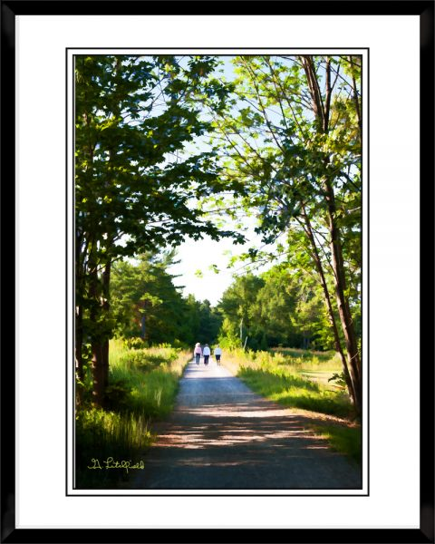 2x3-picture-frame-black-with-A-Topinabee-Walk