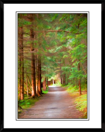 2x3-picture-frame-black-with-Thru-The-Woods
